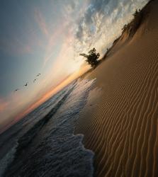 Между морем и пустыней