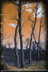 Південь-2008_87