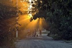 Слободзейский район Приднестровье