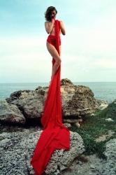 Дівчина в червоному А Зборщик