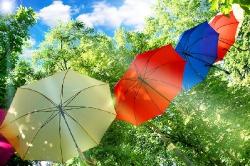 Рилеєв Веселі парасольки