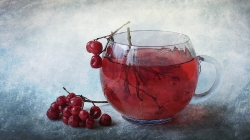 Юлія Гора Зимовий чай з калиною